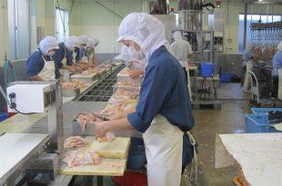 nhà máy chế biến thịt gà