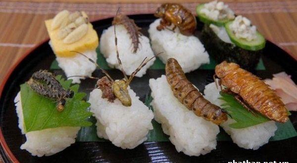 5 món ăn độc đáo & kinh dị ở Nhật Bản
