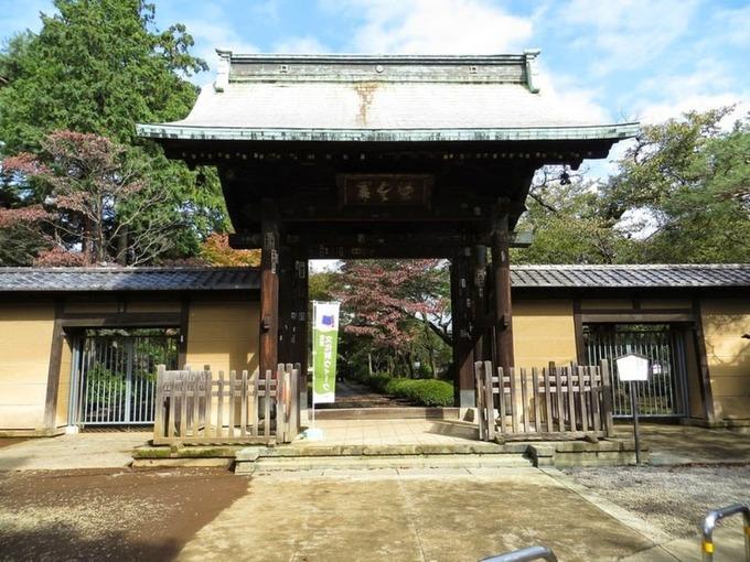 Đền Gotoku - ngôi đền của những chú mèo vẫy mang lại may mắn
