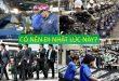 Có nên đi xuất khẩu lao động hay du học Nhật Bản lúc này?