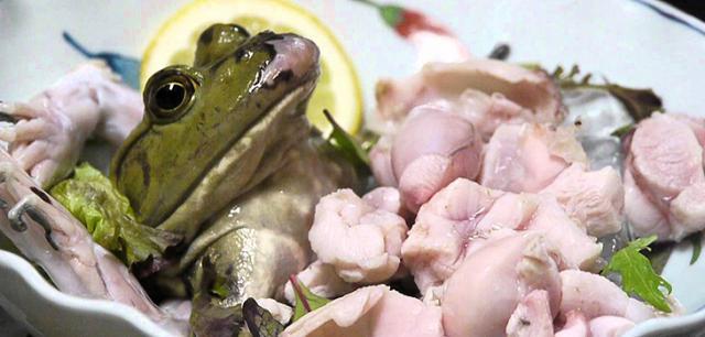 Sashimi ếch còn thở