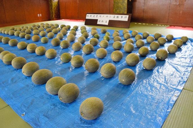 Trộm dưa lưới tại Nhật Bản, 6 người Việt Nam bị bắt ?